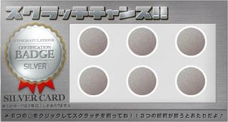 シルバーカード3.jpg