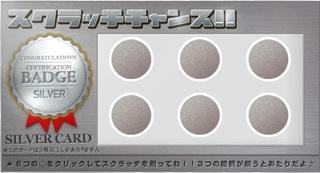 PeX シルバーカード3.jpg