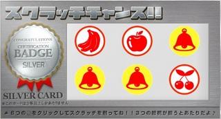 PeX シルバーカード4.jpg