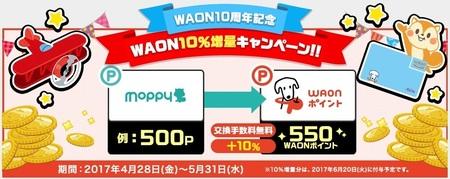 moppy_20170508-1.jpg